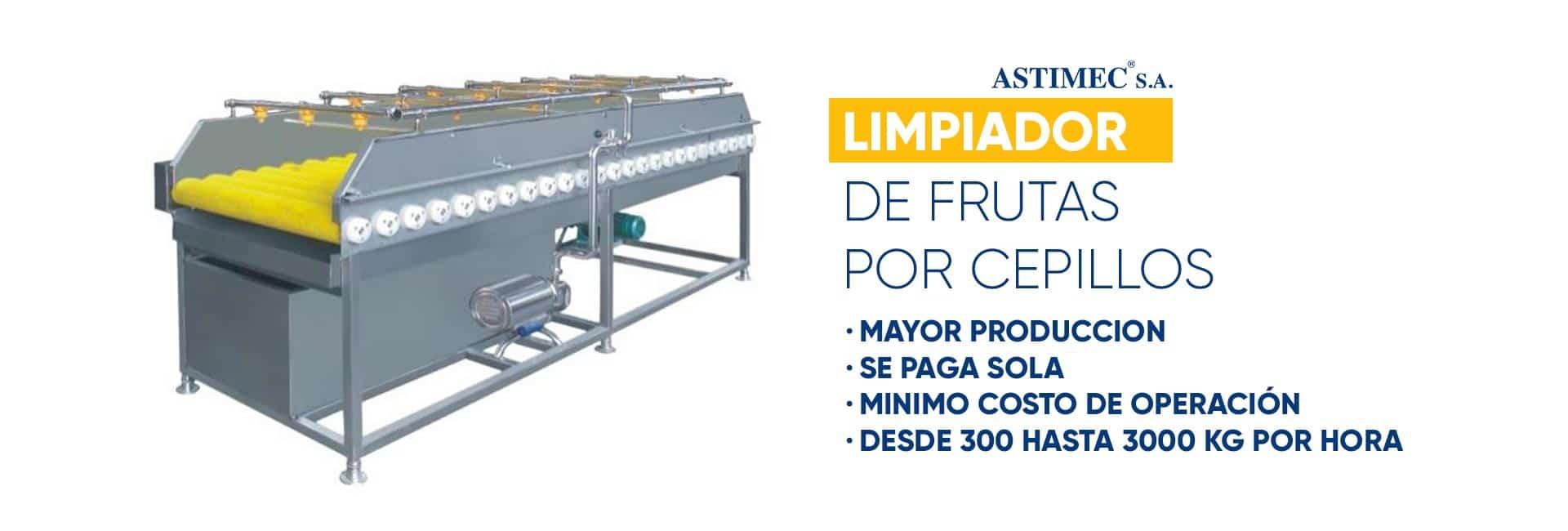 Limpiador de Frutas por Cepillos ASTIMEC